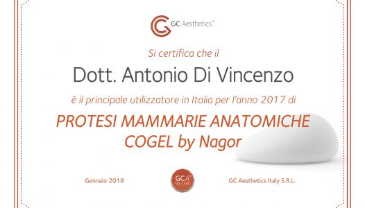 http://www.antoniodivincenzo.it/wp-content/uploads/2018/02/Attestato-CoGel-DiVi-526x300.jpg